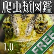 動く!爬虫類・両生類図鑑 FREE:電子図鑑ならではの仕掛けを盛り込んだ、美しいインターフェースの爬虫類・両生類図鑑の無料版