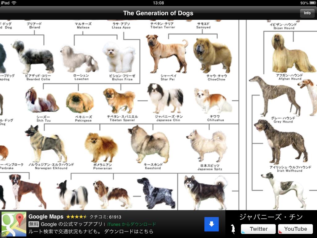 犬の系統図:さまざまな犬種のシルエット神経衰弱で遊べる犬の系統図