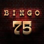 BINGO 75:お花見・歓迎会・結婚式など、様々なイベントで活躍するビンゴ!!