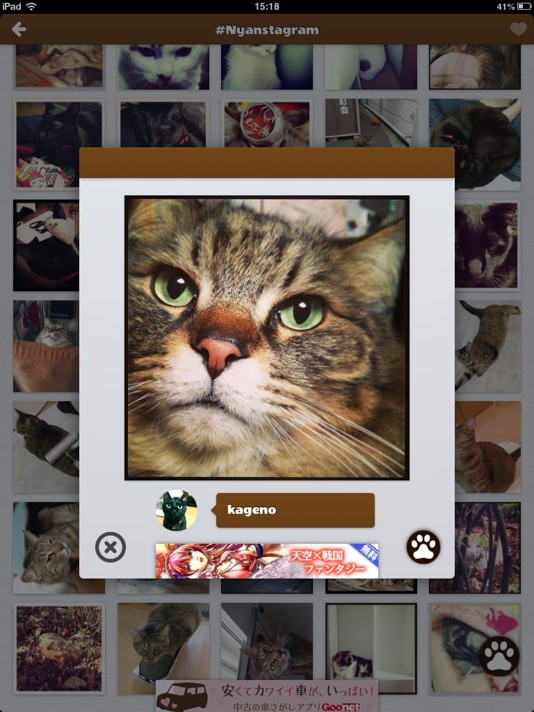 Nyanstagram:Instagramの写真をタグ検索!!にゃーん!!