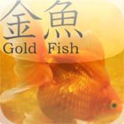 GoldFish 3D:金魚が飼える癒しのiPhoneアプリ【iPad対応アプリ】