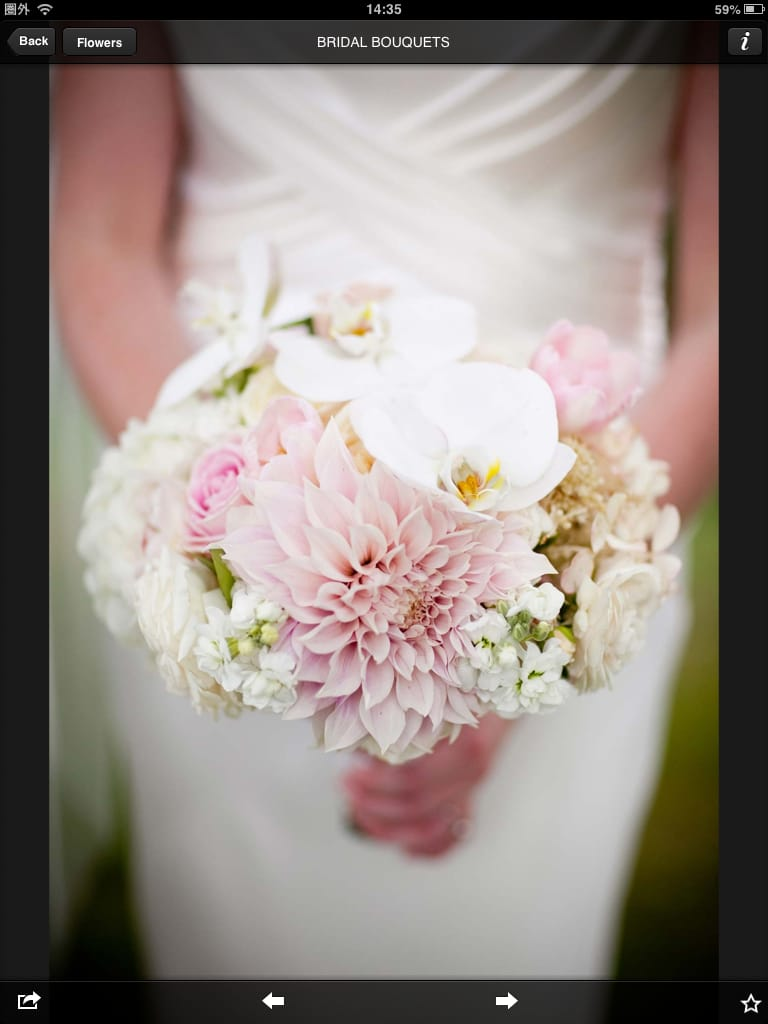 【iPhone/ipadアプリ】Vera Wang on Weddings:ヴェラ・ウォンでおしゃれウェディング14