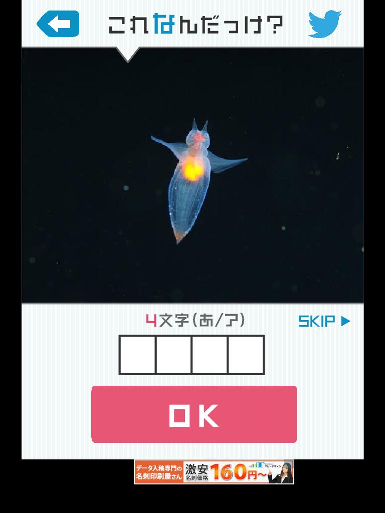 これなんだっけ?: ネプリーグみたいなiPhoneクイズアプリ【ipad対応アプリ】