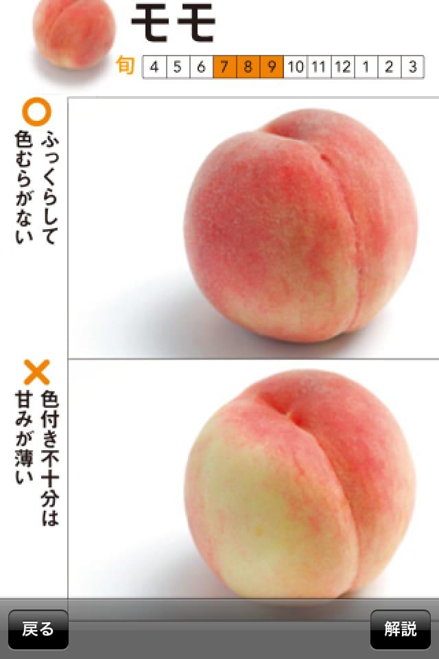 奥田政行のフルーツハンドブック 果物の目利きポイントがわかる!