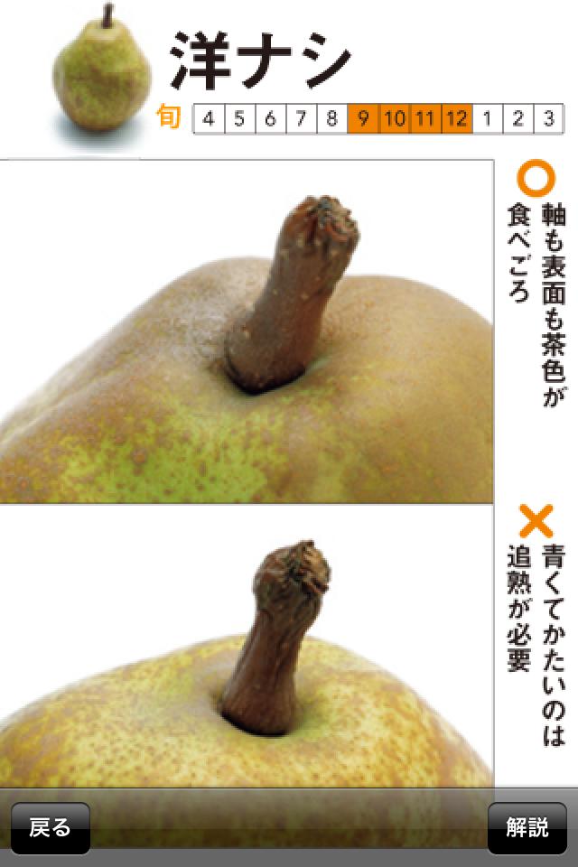 奥田政行のフルーツハンドブック|果物の目利きポイントがわかる!