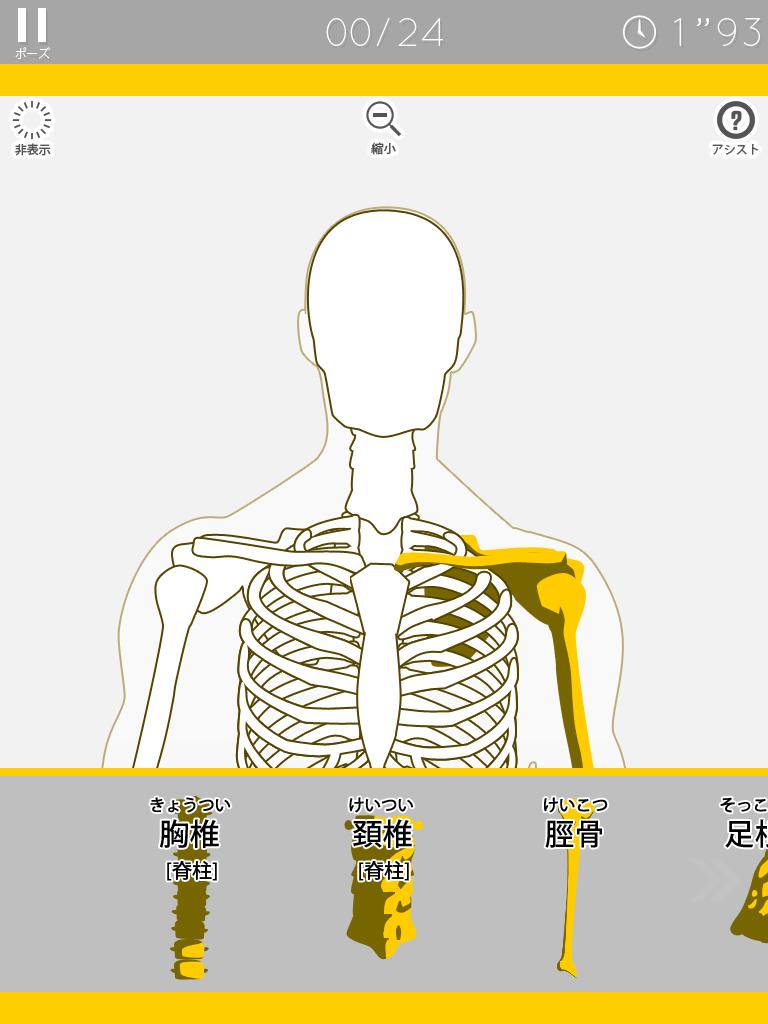 あそんでまなべる 人体模型パズル:無料でこれはすごい!!体の仕組みが楽しく学べるアプリ