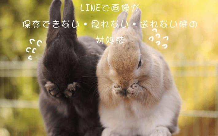 LINEで画像が保存できない・見れない・送れない時の原因