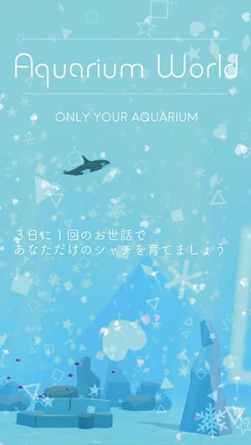 シャチ育成ゲーム3D①