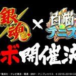 コロプラ、白猫にてTVアニメ銀魂とのコラボ決定!
