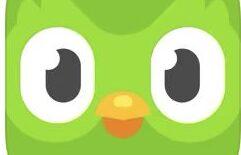「Duolingo」は英語の基礎を学びたい人はもちろん、子供の英語学習の入門におすすめアプリ